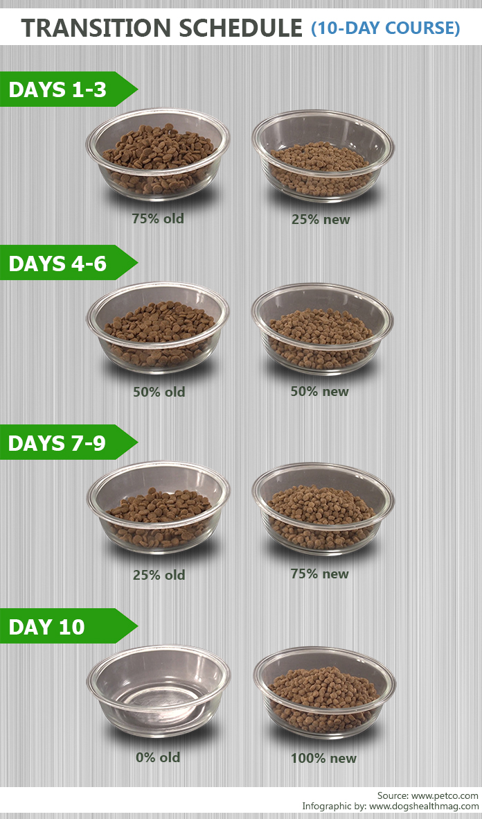 dog food transition schedule